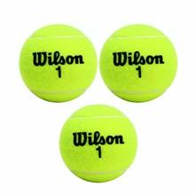 Bola de Tênis Wilson Championship