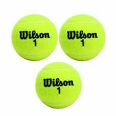 Tubo de Bola de Tennis Wilson Championship